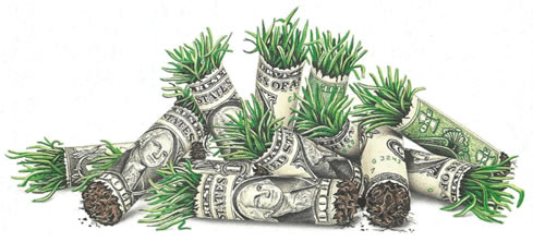 money-roll2